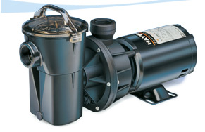 Swimming Pool Pumps and Filters - The Pool Store